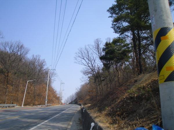 크기변환_사본 -도로변 쾌적한 주행환경 조성-아포읍(사진2).jpg